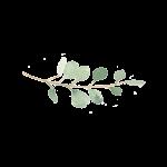 Little my photo logo